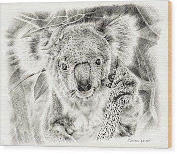 Koala Garage Girl Wood Print