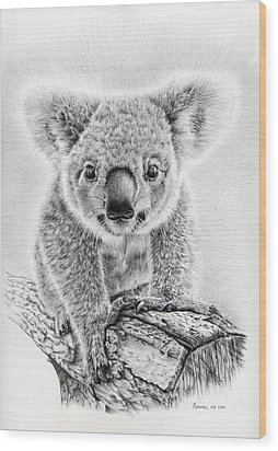 Koala Oxley Twinkles Wood Print by Remrov