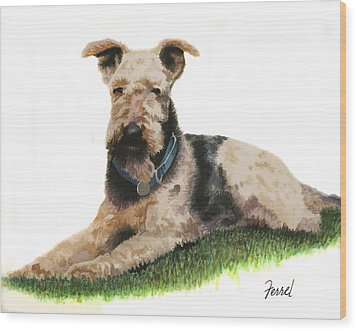Wood Print featuring the painting Kobe Airedale Terrier by Ferrel Cordle