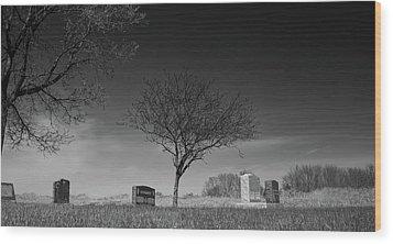 Kohanek Wood Print by Guy Whiteley