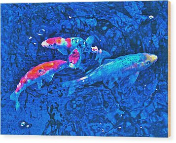 Wood Print featuring the photograph Koi 2 by Pamela Cooper