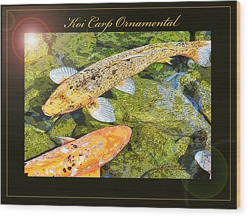 Koi Carp Goldfish Ornamental Framing Print Wood Print