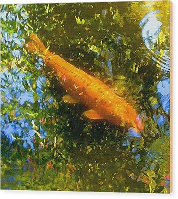 Koi Fish 1 Wood Print by Amy Vangsgard