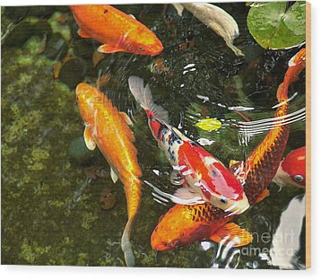 Koi Fish Japan Wood Print by John Swartz