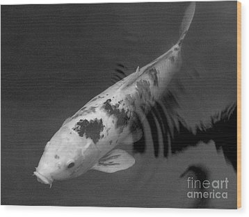 Koi In Black And White Wood Print by Mary Deal