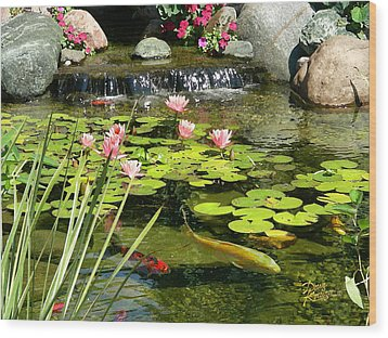 Koi Pond Wood Print by Doug Kreuger