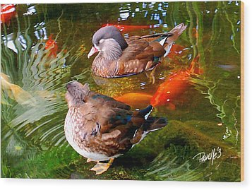 Koi Pond Ducks Wood Print