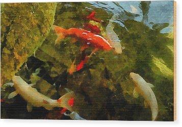 Koi Pond Wood Print by Michelle Calkins