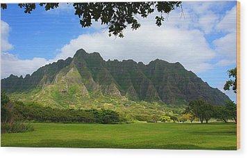 Kualoa Park Hawaii Wood Print by Kevin Smith