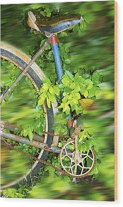 Wood Print featuring the digital art La Bici Di Nonna by Sandro Rossi