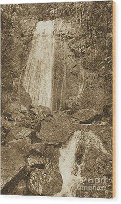 La Coca Falls El Yunque National Rainforest Puerto Rico Prints Vintage Wood Print by Shawn O'Brien