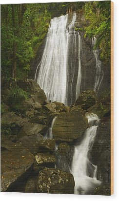 La Coca Falls  Wood Print by Photography  By Sai