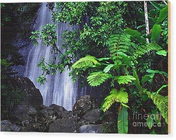 La Coca Falls Wood Print by Thomas R Fletcher