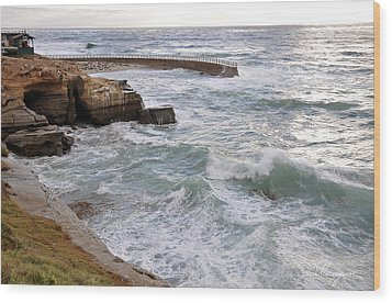 Wood Print featuring the photograph La Jolla Ca by Gandz Photography