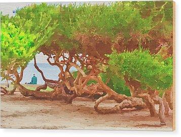 La Jolla California Wood Print by Angela A Stanton