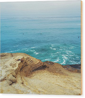 La Jolla Coast Seagull Nest Wood Print by Tanya Harrison