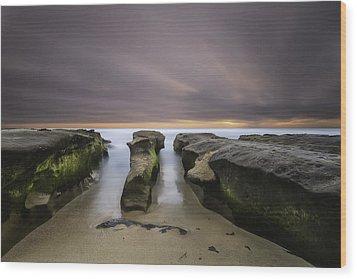 La Jolla Reef Wood Print by Larry Marshall