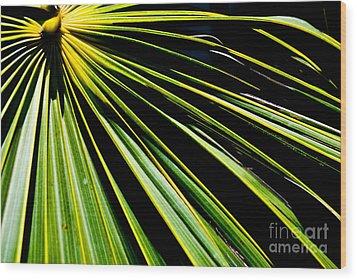 La Palma Wood Print by Jim Rossol