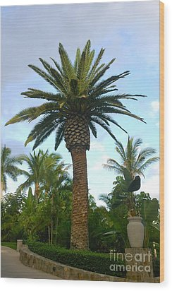 La Palmilla Wood Print by M West