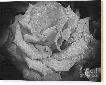 La Rosa Wood Print by Eyzen M Kim