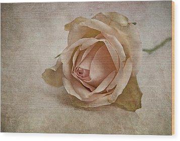 la vie en rose II Wood Print by Claudia Moeckel