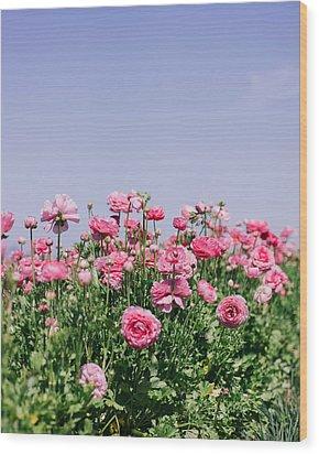 La Vie En Rose Wood Print by Nastasia Cook