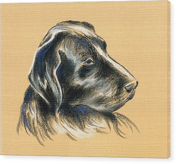 Wood Print featuring the pastel Labrador Retriever - Black Dog Pastel Drawing by MM Anderson