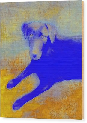 Labrador Retriever In Blue And Yellow Wood Print by Ann Powell