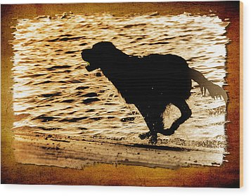 Labrador Silhouette Wood Print by Eleanor Abramson
