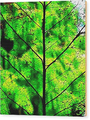 Lacey Leaf Wood Print by Karen Molenaar Terrell