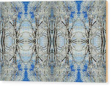 Lacy Winter Trees Abstract Art Photo Wood Print