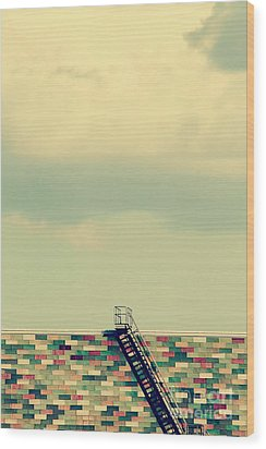 Ladder To Nowhere  Wood Print by Trish Mistric