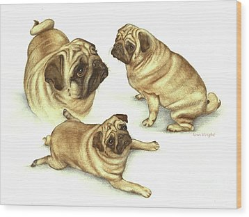 Lady Marmalade Of Lydiard Pug Wood Print