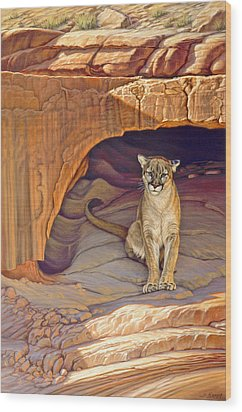 Lady Of The Canyon Wood Print by Paul Krapf