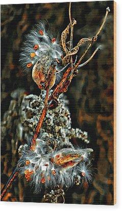 Lady Of The Dance Wood Print by Steve Harrington