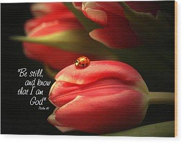 Ladybug And Tulip Wood Print by Linda Fowler
