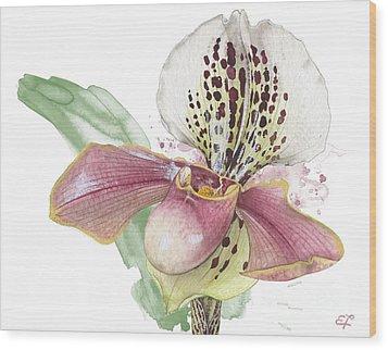 Ladys Slipper - Orchid 14 - Elena Yakubovich Wood Print
