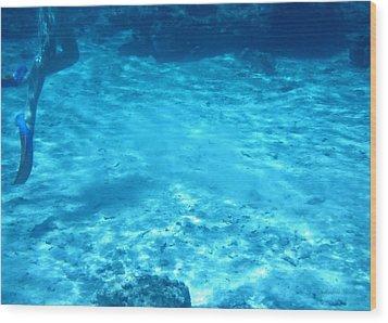 Lagoon Dive Cook Islands Wood Print by Amanda Holmes Tzafrir