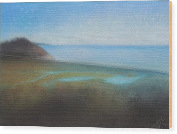 Lagoon II Or Overlooking Torrey Pines Wood Print