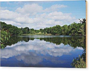 Lagoon IIi Wood Print