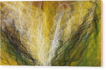 Lair Dynamics Wood Print by Constance Krejci