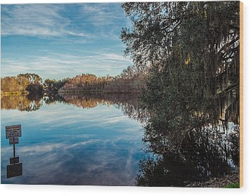 Lake Alice Wood Print by Louis Ferreira