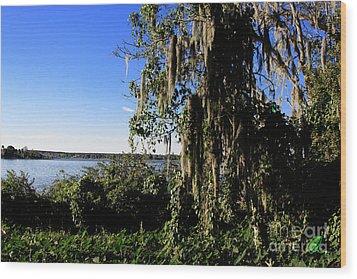 Wood Print featuring the photograph Lake Apopka 1 by Chris Thomas