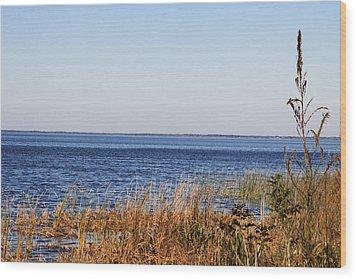 Wood Print featuring the photograph Lake Apopka 2 by Chris Thomas