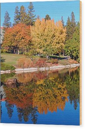 Lake At Davis Wood Print by Jim Halas