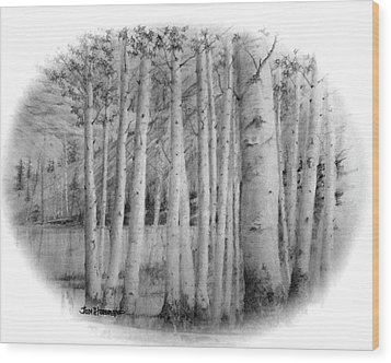 Wood Print featuring the drawing Lake Birches by Jim Hubbard