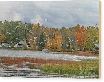 Lake Carmi Autumn 2012 Wood Print by Deborah Benoit