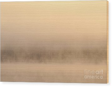 Lake Cassidy With Fog And Trees Along Shoreline Shrouded In Fog Wood Print
