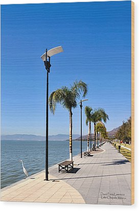 Wood Print featuring the photograph Lake Chapala - Mexico by David Perry Lawrence