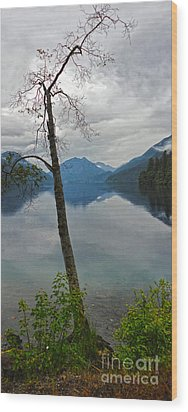 Lake Crescent - Washington - 01 Wood Print by Gregory Dyer